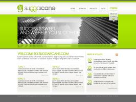 SuggarCane Website by dFEVER