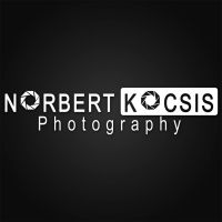 My Logo and Watermark by NorbertKocsis