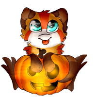 Look at my cute pumpkin! by MissLayira