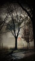 Creepy House in The Forest by DarkDawn-Rain