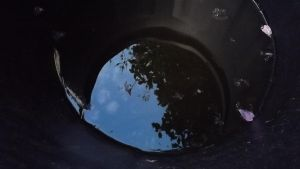 Reflection (Day 18) by ChrisM38