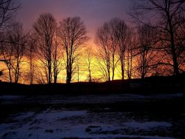Fiery Sunset with Trees by LilyBlight