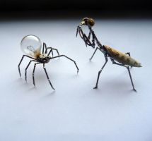 Spider and Mantis, scale by AMechanicalMind