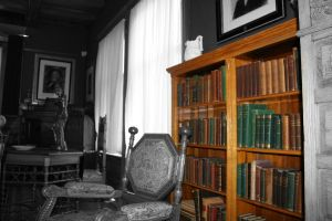 The Bookcase by AndehDulac