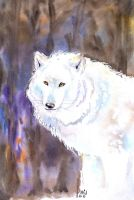 White Wild Spirit by IPPO-Lita