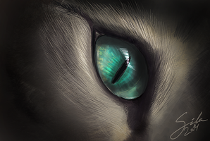 Deep Cat Eye. Speedpaint. by Sintija