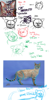 How do I Cat Anatomy? by FeatheredSoap