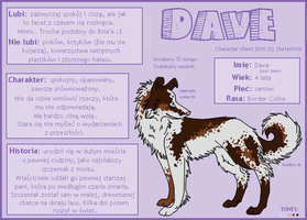 Character sheet Dave by Shetani106