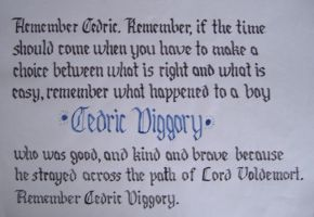 Remember Cedric Diggory by Firegrl