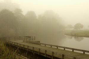 Misty boardwalk and lonely bench by steppeland