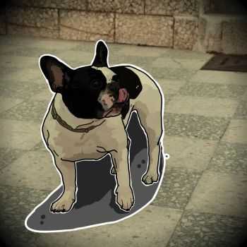 Dog illustration by pedromiguelgomes