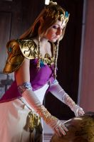 Zelda_Where do I send Link this time? by CalipsoCosplay