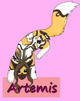 Artemis by MatchCense
