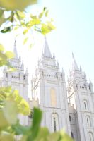 Lds Temple 11. by DisneyGirlAshleigh