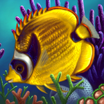 Layer Paint tropical Raccoon Butterfly fish by charfade