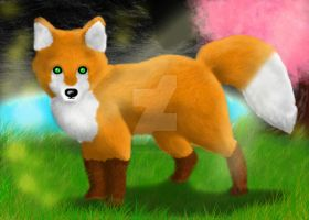 Little Fox is watching You by Kunie-Funakoshi