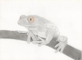 frog by FrO-ozeN