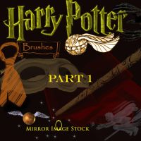Harry Potter Brushes Prt 1 by mirrorimagestock