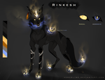 Rinkesh Reference by Vyrosk