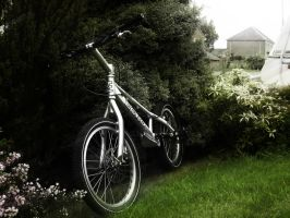 Echo 20' trials bike by Dannsquire