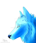 Ice wolf: new character by HimaMoriq