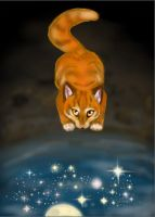 Firestar by AlieTheKitsune
