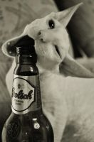 Gugl and beer by Plakitina