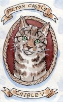 Ship Cat Series - Chibley, of the Picton Castle by angelac
