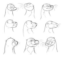 Animatic: Older Otter Head Concepts by Temiree