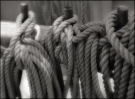 Roping Up by aponom