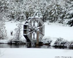 Water Wheel by Timm45