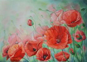 Poppies by Ganusia