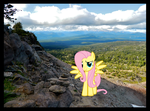 Fluttershy-A Lovely Encounter Along the Trail PIRL by FlutterbatIsMagic