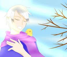 APH- Song Birds by magickitt