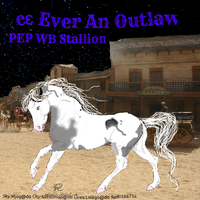 ce Ever An Outlaw by Cazzie77