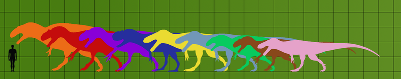 Large Theropods of the Jurassic by Veterufreak
