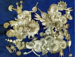 Victorian Natural History Abstract by mmpratt99