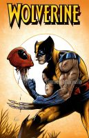 Wolverine DeadPool by VinRoc
