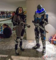 Nyreen and Garrus II by Adnarimification