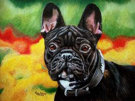 Little Frenchie by anniecanjump