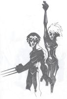 Storm and Wolverine by Glax101