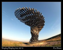 Singing Ringing tree rld 12 da by richardldixon
