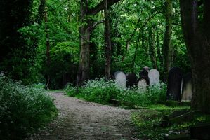 grave yard stock 8 by rustymermaid-stock