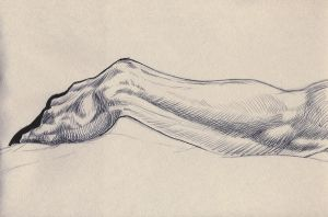 'Life Drawing Forearm Study 2' by TADASHI-STATION