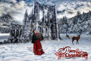 Merry Christmas by arawyndesigns