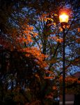 Park lamp at dusk by Eraser85
