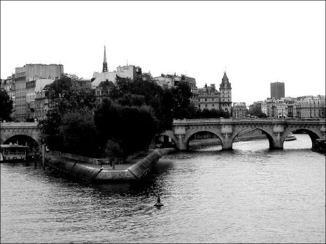 Pont neuf by sannel