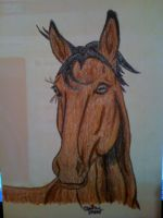 ACEO Practice Horse 1 by sparkpaw
