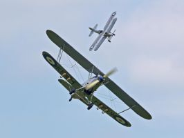 Hawker Hind and Demon - Old Warden by davepphotographer