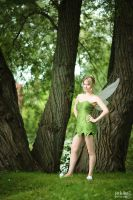 Tinkerbell - 2 by alucardleashed